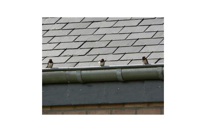 tejado cubierta